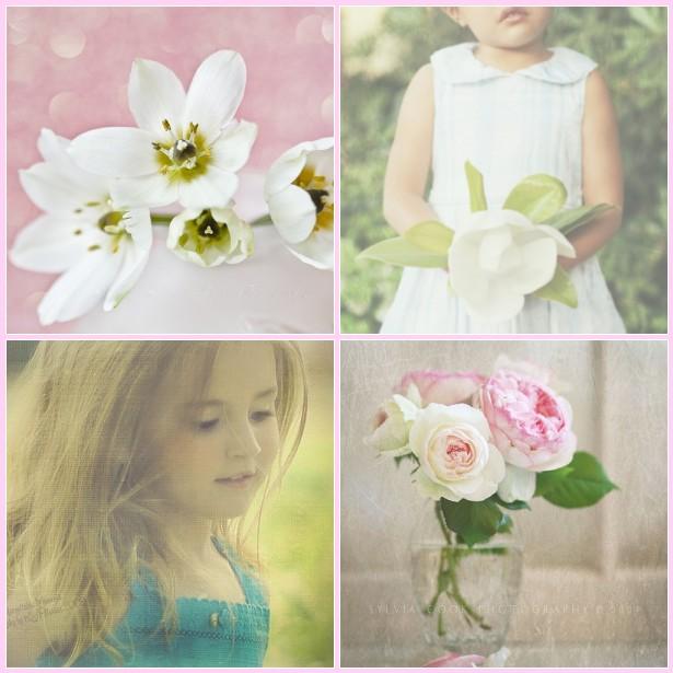 Florabella pinkturq