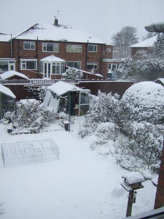 January 2010 045