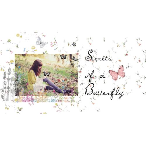 Secretsofabutterfly banner inspiration