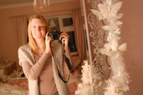 December 2010 Nikon 134blog