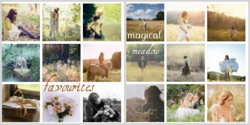 Favourites meadow