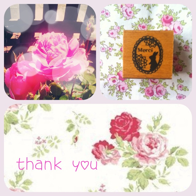 Thankyou collage