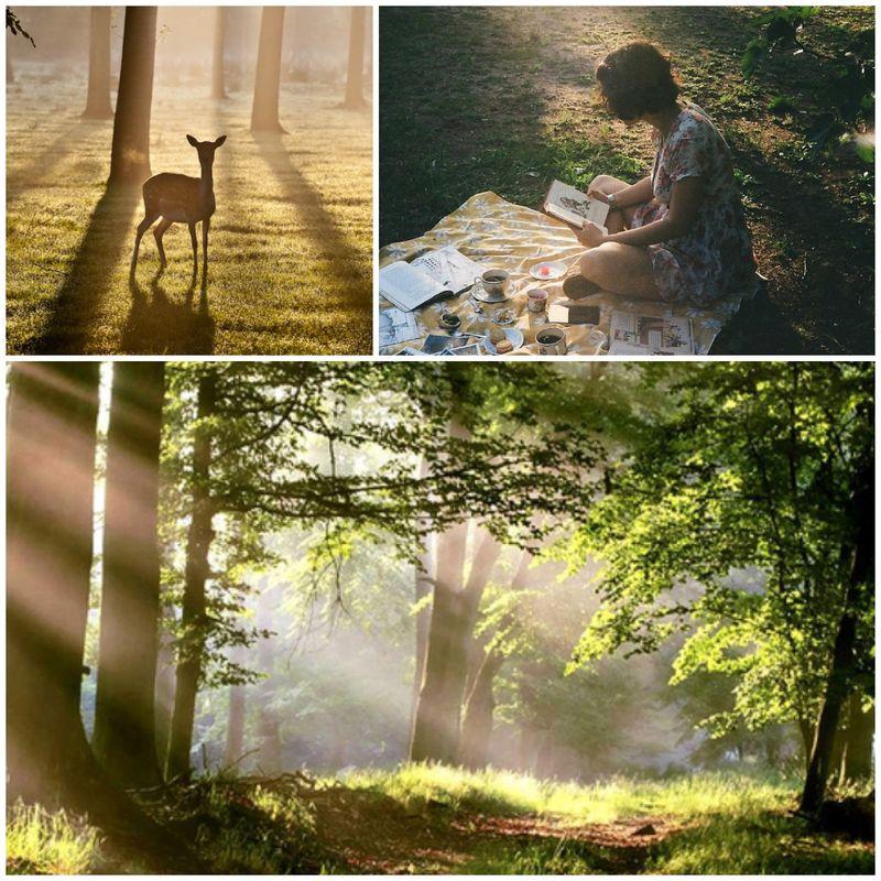 Keep breathing enchanted wood