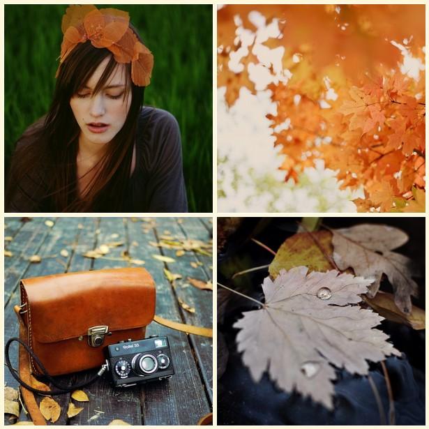 Autumnal mosaic
