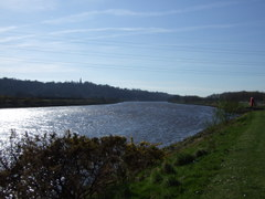 March_07_155