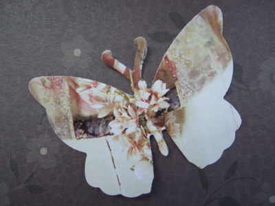 Butterflies_in_paper_002